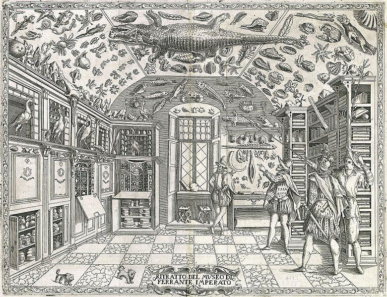 Ferrante Imperato of Naples, 1599.